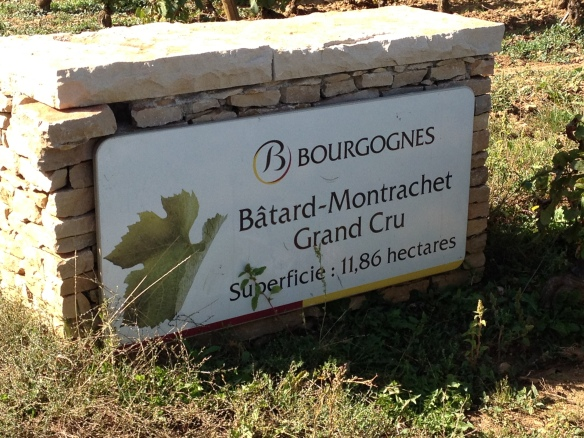 The vineyard of the legendary Batard-Montrachet.