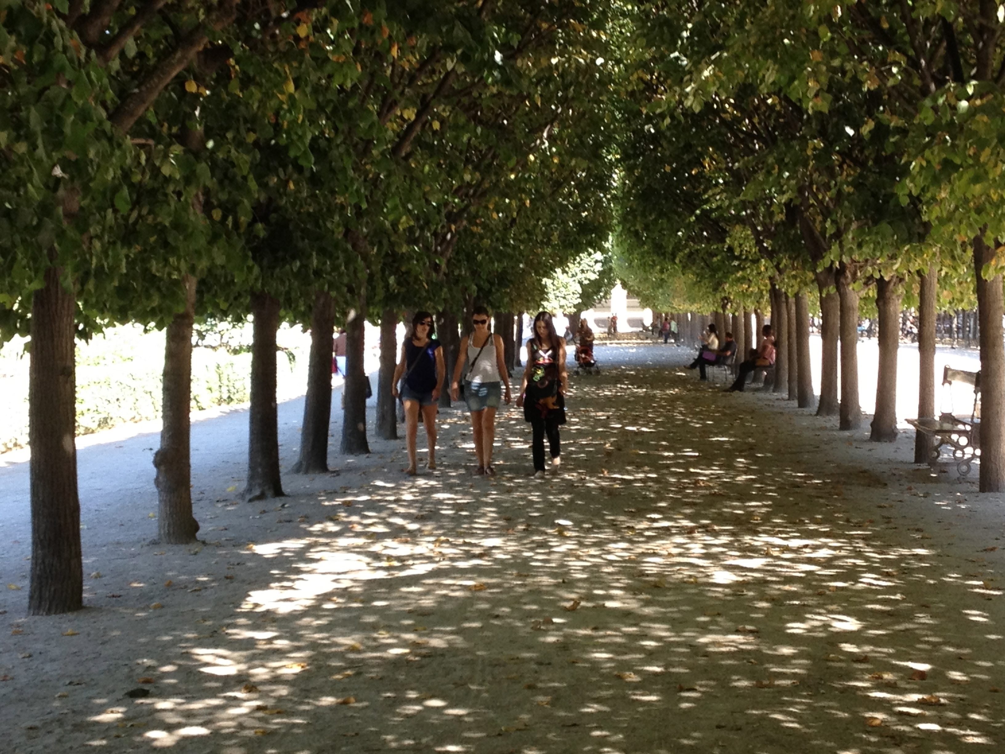 The Carefully Manicured Trees Cast Dapples Of Shade In The Gardens Of The  Palaisroyal, Just As They Would Have 250 Years Ago In The Days Of  Elisabeth Vig�e