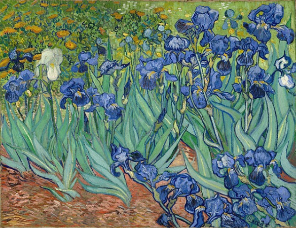 Van Gogh, Irises (1888), Getty Museum, Los Angeles