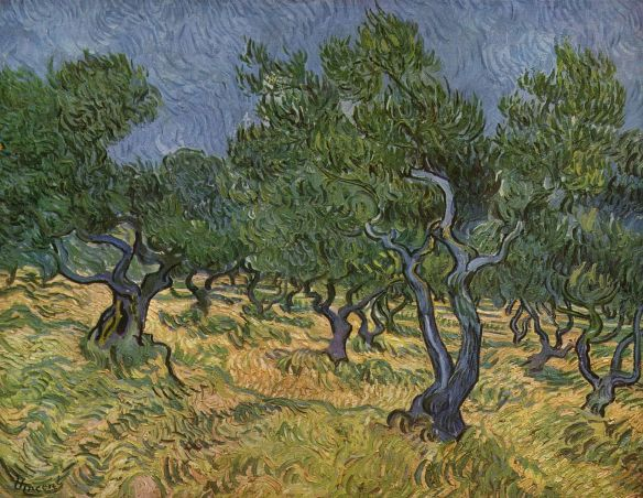 Van Gogh, Olive Orchard, June 1889 Nelson-Atkins Museum of Art, Kansas City